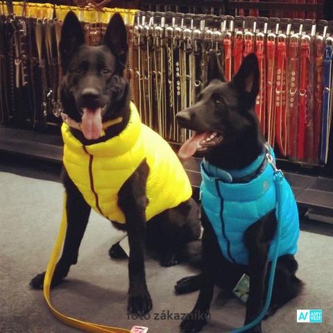 Novinka! Airy Vest bunda nejen pro aktivní psy