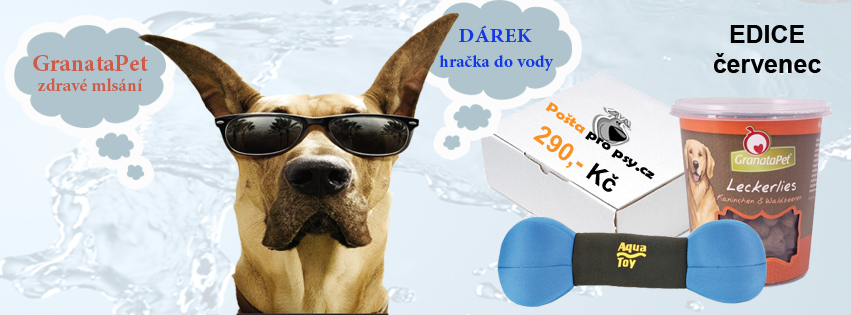 Pošta pro psy červencová edice již v prodeji!