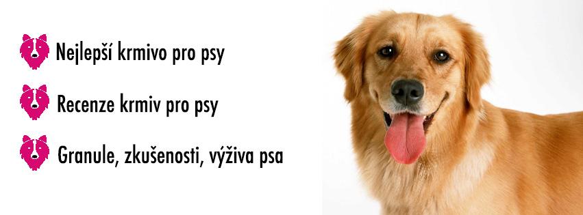 granule pro psy, nejlepší krmivo pro psy, kvalitní krmivo pro psy, recenze krmiv pro psy, granule pro psy zkušenosti