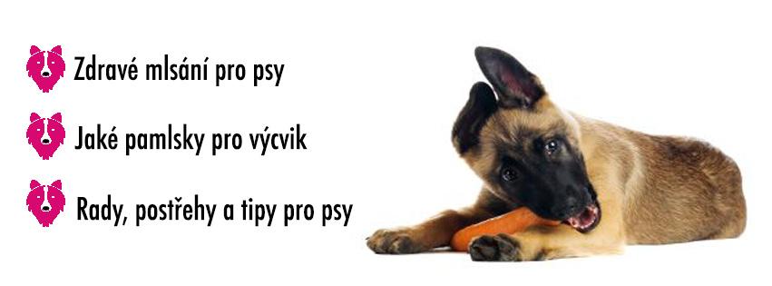 pamlsky pro psy, zdravé pamlsky pro psy, funkční pamlsky pro psy, žvýkací kosti pro psy, zdravé kosti pro psy